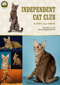 Independent_cat_club_2016_13